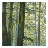 Trees in Fog II Plakater af Cheryl Fortier
