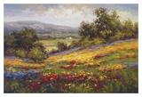 Campo di Fiore I Art by  Hulsey