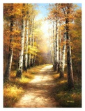Birch Walk Print by  Arcobaleno