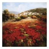 Village Poppies Prints by  Marino