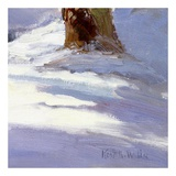 Majestic Winter (detail no. 2) Prints by Kent Wallis
