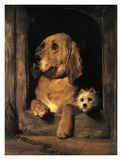 Dignity and Impudence Print by Edwin Landseer