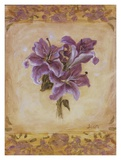 Lily Violeta Prints by Shari White