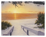 Evening Sunset Prints by Diane Romanello