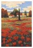 Castigliani II Posters by Kanayo Ede