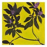 Flowers I Plakater af Doris Macdougall