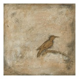 Bird Study II Prints by Casey Matthews