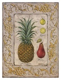 Tropical Fruit II Prints by Janet Kruskamp