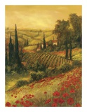Toscano Valley II Posters by Art Fronckowiak