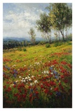 Wildflowers Prints by  Hulsey