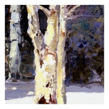 Beautiful Winter (detail no. 6) Poster by Kent Wallis