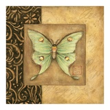 Luna Moth Square Art by Susan Winget