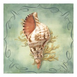 Seashells I Prints by Marissa Decinque