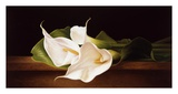 Calla Lillies on Ledge Prints by Patrick Farrell