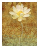 Abstract Lotus II Prints by Eloise Ball