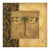 Dragonfly Square Poster by Susan Winget