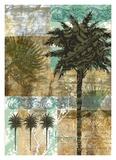 Palm III Plakaty autor Maeve Fitzsimons