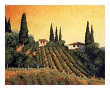 Vineyards of Tuscany Art by Santo De Vita