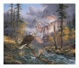 Eagles Perch Affischer av Rudi Reichardt