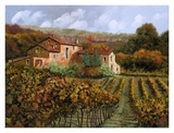 Tra Le Vigne a Montalcino Prints by  Furtesen