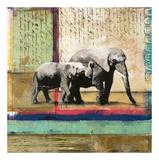 Serengeti Elephant Prints by  Fischer & Warnica