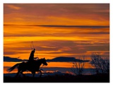 Ropin' at Sunset Poster by Bobbie Goodrich
