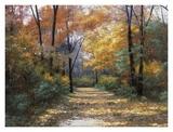 Strada in autunno Stampe di Diane Romanello