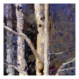 Beautiful Winter (detail no. 9) Posters by Kent Wallis