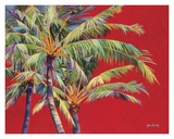 Fire Palm Posters by Jean Bradley