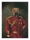 Major General Woof Poster von  Massy