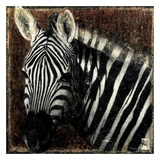 Portrait de Zebre Prints by Arietta Braun