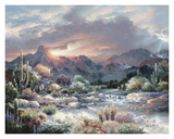 Sonoran Sunrise Prints by James Lee