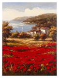 Poppy Harbor Print by  Marino