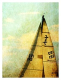 Newport Sails II Prints by Linda Plaisted