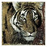 Portrait de Tigre Print by Arietta Braun
