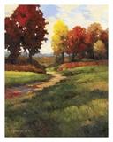 Late Noon Path II Print by Kanayo Ede
