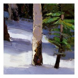 Majestic Winter (detail no. 5) Poster di Kent Wallis