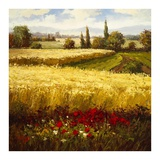 Golden Harvest Prints by  Hulsey