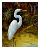 Tropical Egret I Prints by  Kilian
