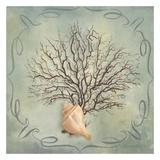 Seashells IV Posters by Marissa Decinque