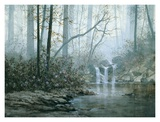 Transcending Forest Prints by Juan S. E. Archuleta