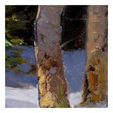 Majestic Winter (detail no. 6) Print by Kent Wallis