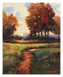 Late Noon Path I Prints by Kanayo Ede