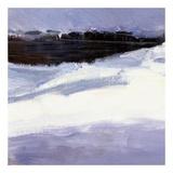 Majestic Winter (detail no. 3) Prints by Kent Wallis