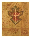 Autumn Leaf IV Prints by Marcia Rahmana