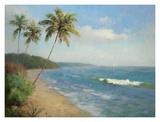 Palma de la Playa Prints by Karen Dupré