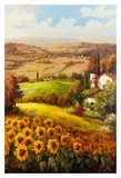 Italian Countryside Plakater af Hulsey