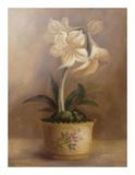 Olivia's Flowers IV Pôsters por  Cheovan