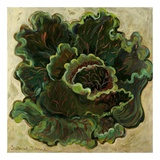 Lettuce Art by Suzanne Etienne
