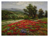 Meadow of Wildflower Posters by  Hulsey